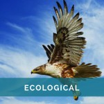 Ecological - text
