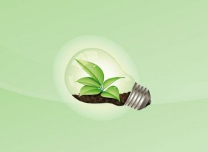 l69549-organic-light-bulb-48312