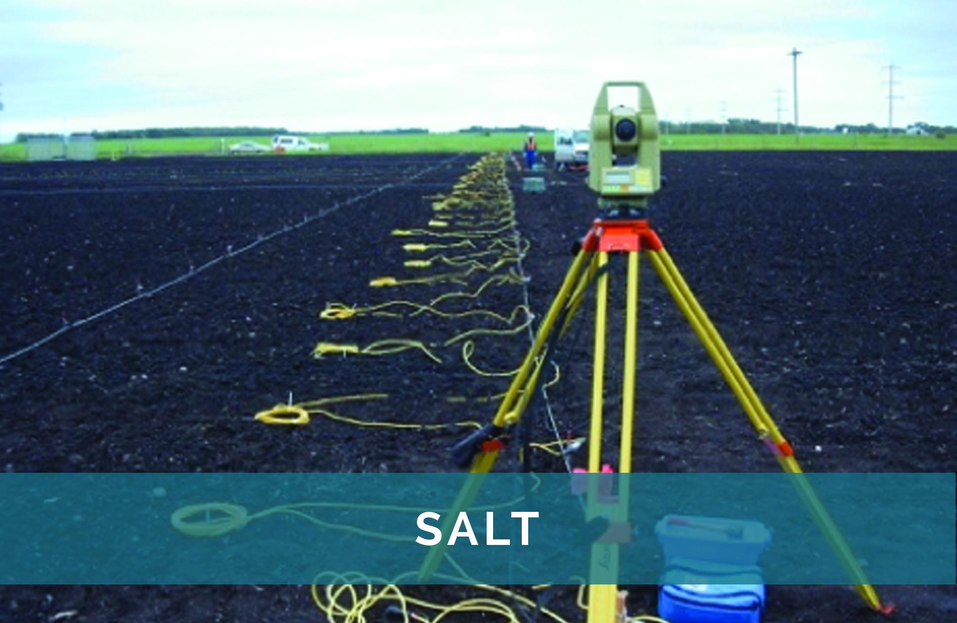 Salt - text
